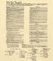 Constitution on Khaki Framed Print