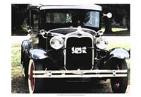 Joy Ride II Fine Art Print