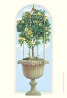 Roses & Obelisk Fine Art Print