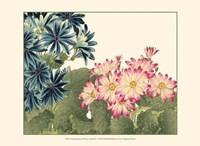Small Japanese Flower Garden IV Fine Art Print