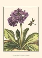 Garden Vignette III Fine Art Print