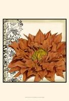 Botanica III Framed Print