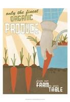 Organic Produce Fine Art Print