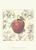 Apple and Botanicals Framed Print