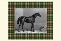 Equestrian Plaid I Fine Art Print