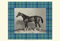 Equestrian Plaid IV Fine Art Print