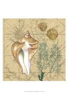 Coastal Map Collage III Fine Art Print