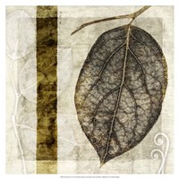 Fall Leaves I Fine Art Print