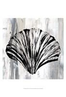 Black Shell I Fine Art Print