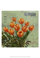 Orange Blooms & Postage II Fine Art Print