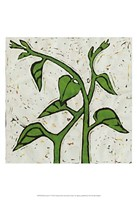 Planta Green V Fine Art Print