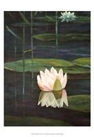 Tranquility I Fine Art Print