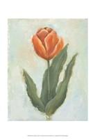 Painted Tulips IV Fine Art Print
