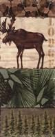 Nature Trail III Fine Art Print