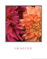 Imagine Flowers Fine Art Print