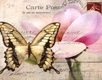 Carte Postale Magnolia I Framed Print