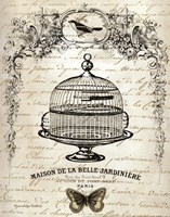 French Birdcage I Fine Art Print