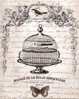 French Birdcage I - mini Fine Art Print