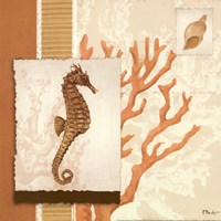 Aquarius Coral Sq II Fine Art Print