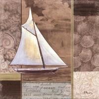 Santa Rosa Boat II Framed Print