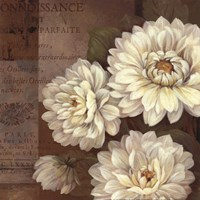 Patina Dahlia - mini Fine Art Print