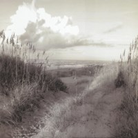 Dunes I Sq. BW Fine Art Print