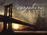 Capture Life Fine Art Print