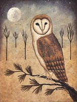 Barn Owl Framed Print