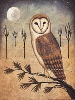 Barn Owl Fine Art Print