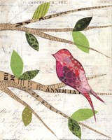 Birds in Spring IV Fine Art Print