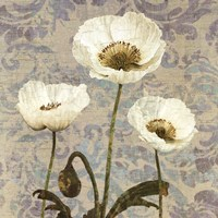 Damask Bloom VI Fine Art Print