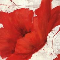 Petite Rouge I Fine Art Print