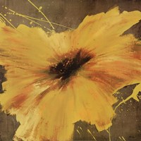 Colourful Flowers II Framed Print