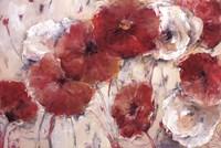 Sea of Poppies Fine Art Print