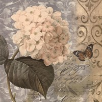 Flowers Butterfly I Fine Art Print