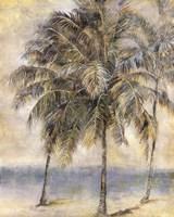 Palm Hammock II Fine Art Print