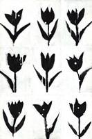 Tulip Noir Composite Fine Art Print