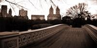Central Park II Fine Art Print