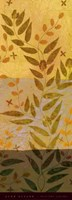 Eucalyptus II Framed Print