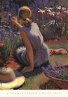 Catmint & Cornflowers Fine Art Print