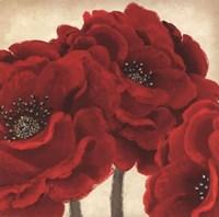 Red Peony II Fine Art Print