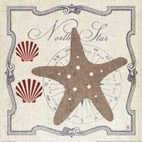 Pacific Starfish Fine Art Print
