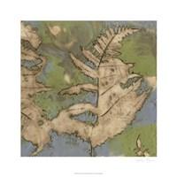 Fern Lake I Framed Print