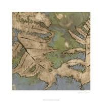 Fern Lake II Framed Print