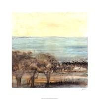 Turquoise Vista II Fine Art Print