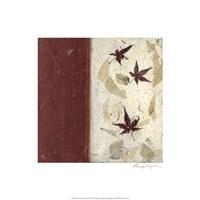 Earthen Textures XII Fine Art Print