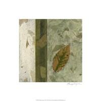 Earthen Textures XIV Fine Art Print