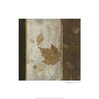 Earthen Textures XVI Fine Art Print