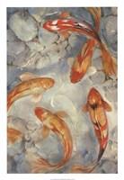 Vibrant Koi II Framed Print