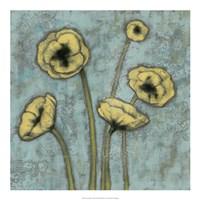 Sun Poppies I Framed Print